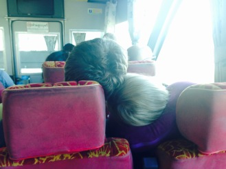 Snoozing on the hour long bus transfer