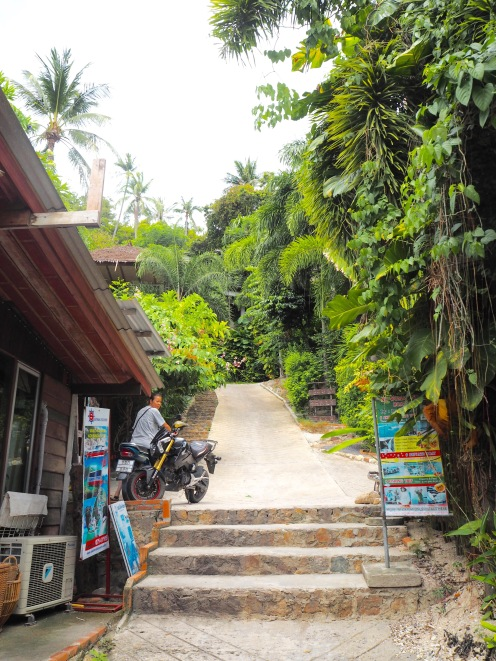 The walk down into the resort