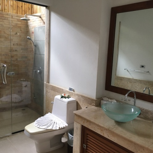 Ensuite with outdoor shower