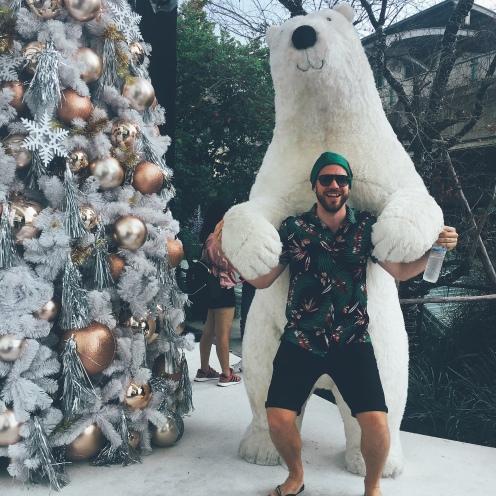 The local mall now has tropical polar bears...