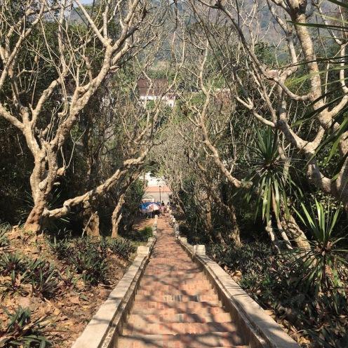 Climbing Mount Phousi