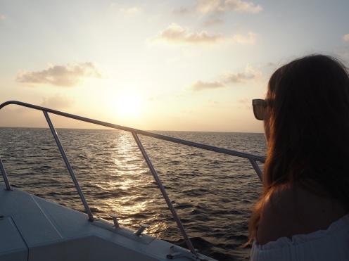 Enjoying the sunset dolphin cruise